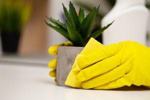 empresa para limpieza profesional en valencia - limpieza-