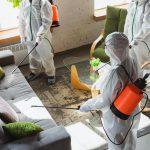 empresa para limpieza profesional en valencia - desinfección de espacios-